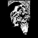02-gorilla-black