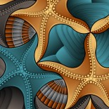 04-starfish-shells-canvas