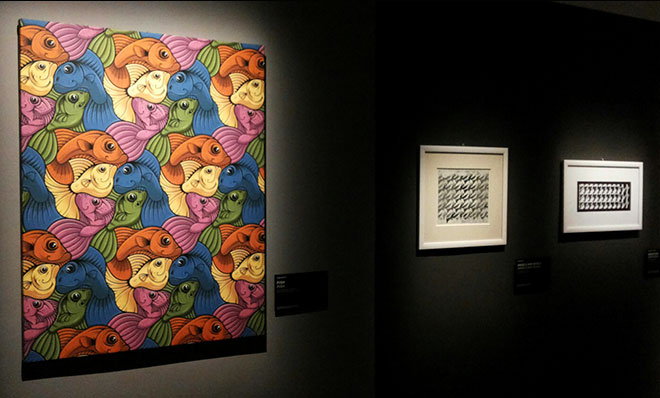 fat punk studio 5 fish tessellation work on display at the m.c.escher exhibition in Rome